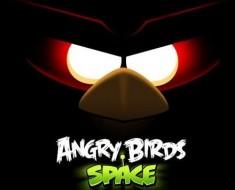 Versiones piratas de Angry Birds Space para Android contienen Malware
