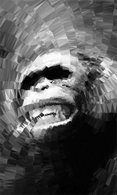 gorila_r1_c1